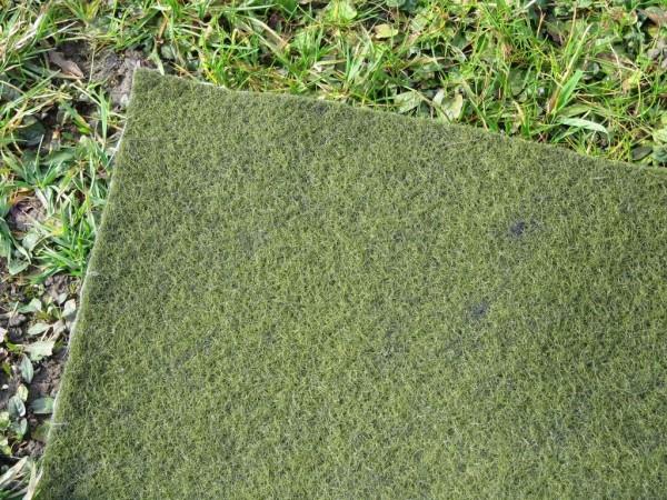 Grüne Ufermatte